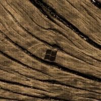 Branded Wood Windows