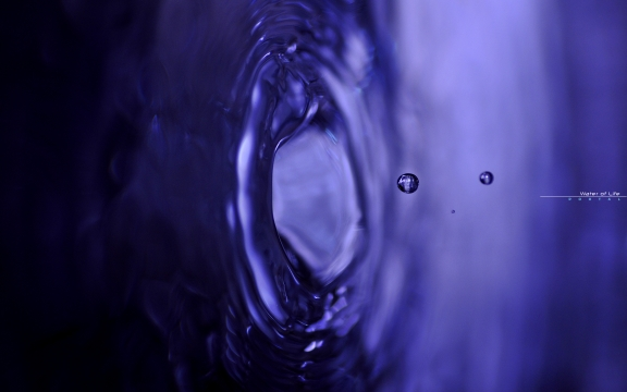 Water Of Life 07WP