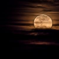Moonrise 1 31 18