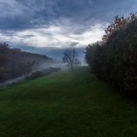 Rogers Creek Fog
