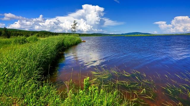 Beaver Brook Scenery - HDR