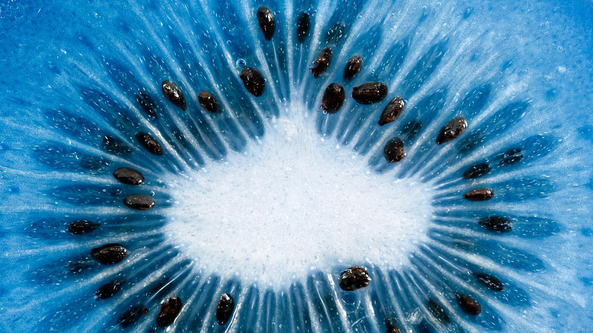 Blue Kiwi Macro