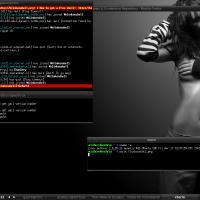 Fluxbox on Mint Linux