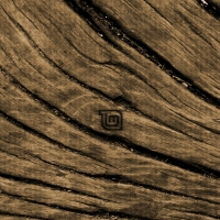 Branded Wood Linux Mint