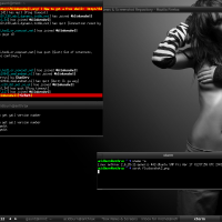 Fluxbox on Mint Linux